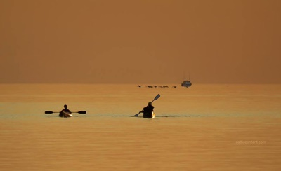Kayakers on Lake Ontario <i>- by Cathy Contant</i>