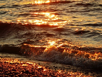Liquid Gold on Sodus Point Beach <i>- by Cathy Contant</i>