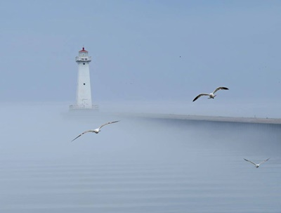 Pier Light in the Fog <i>- by Cathy Contant</i>